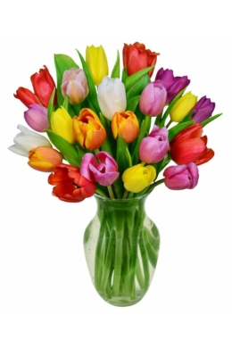 Színes tulipánok