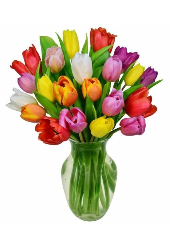 Színes tulipánok_XS